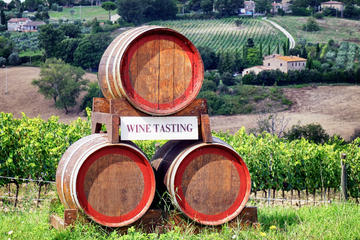 chianti classico tour with dinner in pisa 265695