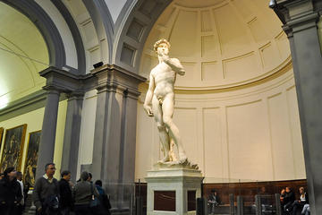 florence accademia gallery tour from pisa in pisa 289444